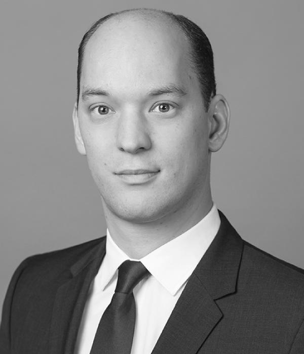 Prof. Alexander J. Wulf